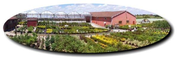 Grobe S Nursery And Garden Centre Home