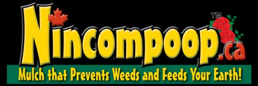 Nincompoop