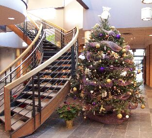 Grobe's Nursery and Garden Centre - Grobe's Indoor Christmas Tree ...