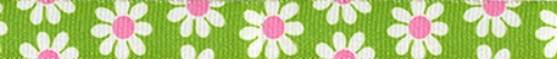green and pink daisy lead