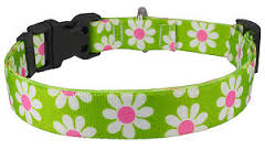 Yellowdog Design green and pink daisy collar
